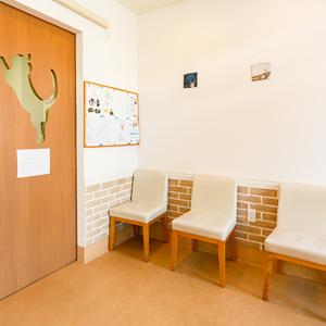 猫専用の診察室